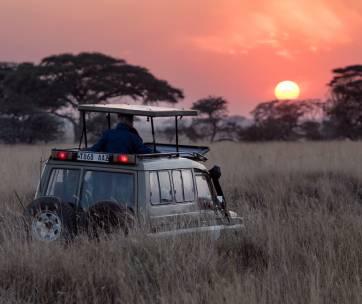 un camion en safari africain